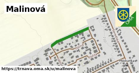 ilustrácia k Malinová, Trnava - 223m