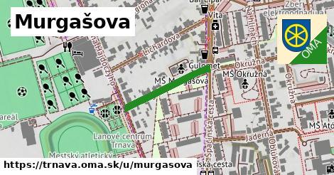 ilustrácia k Murgašova, Trnava - 213m