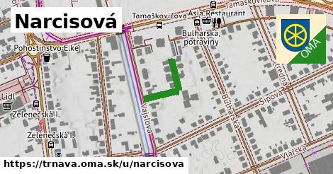 ilustrácia k Narcisová, Trnava - 155m