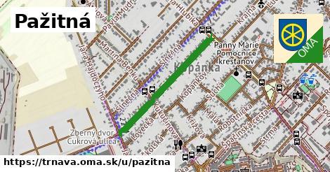 ilustrácia k Pažitná, Trnava - 608m