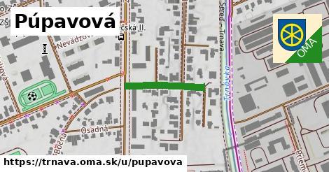 ilustrácia k Púpavová, Trnava - 186m