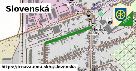 ilustrácia k Slovenská, Trnava - 373m