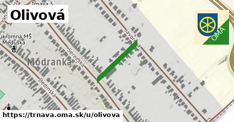 ilustrácia k Olivová, Trnava - 176m