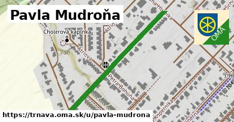 ilustrácia k Pavla Mudroňa, Trnava - 437m