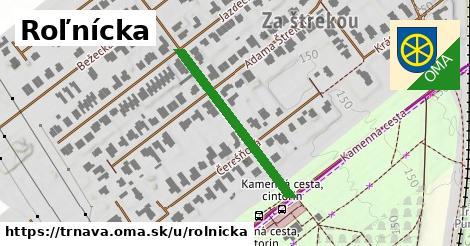 ilustrácia k Roľnícka, Trnava - 294m