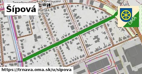 ilustrácia k Šípová, Trnava - 568m