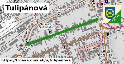 ilustrácia k Tulipánová, Trnava - 469m