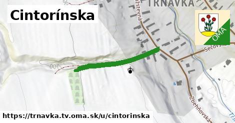 ilustračný obrázok k Cintorínska, Trnávka, okres TV