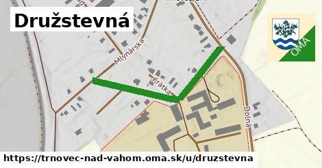 ilustrácia k Družstevná, Trnovec nad Váhom - 366m
