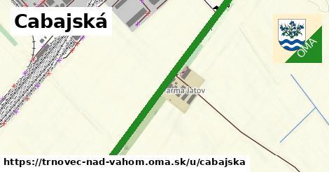 ilustrácia k Cabajská, Trnovec nad Váhom - 3,3km
