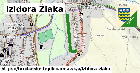 ilustračný obrázok k Izidora Žiaka, Turčianske Teplice