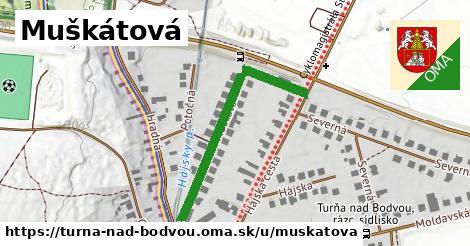ilustrácia k Muškátová, Turňa nad Bodvou - 245m
