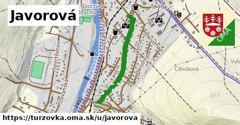 ilustrácia k Javorová, Turzovka - 605m