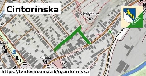 ilustrácia k Cintorínska, Tvrdošín - 261m