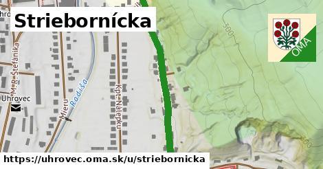 ilustrácia k Striebornícka, Uhrovec - 407m