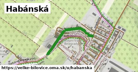 ilustrácia k Habánská, Velké Bílovice - 330m