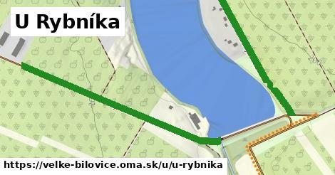 ilustrácia k U Rybníka, Velké Bílovice - 0,80km