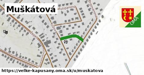 ilustrácia k Muškátová, Veľké Kapušany - 126m
