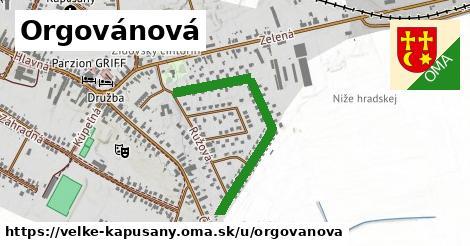 ilustrácia k Orgovánová, Veľké Kapušany - 0,74km