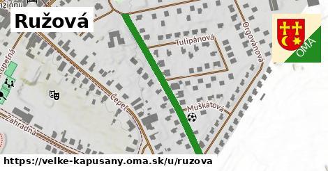 ilustrácia k Ružová, Veľké Kapušany - 369m