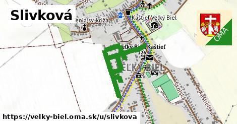 ilustrácia k Slivková, Veľký Biel - 0,95km