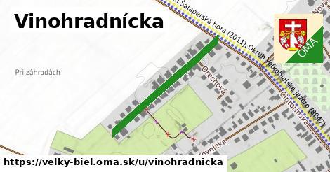 ilustrácia k Vinohradnícka, Veľký Biel - 321m