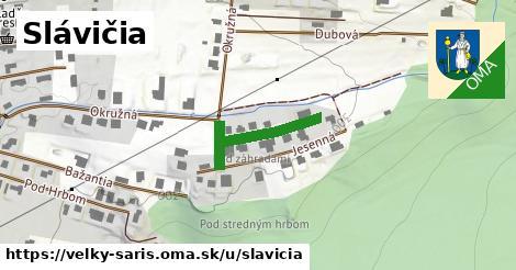 ilustrácia k Slávičia, Veľký Šariš - 459m