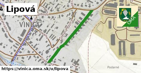 ilustračný obrázok k Lipová, Vinica