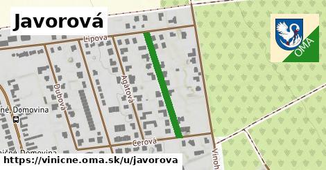 ilustrácia k Javorová, Viničné - 254m