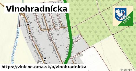 ilustrácia k Vinohradnícka, Viničné - 0,79km