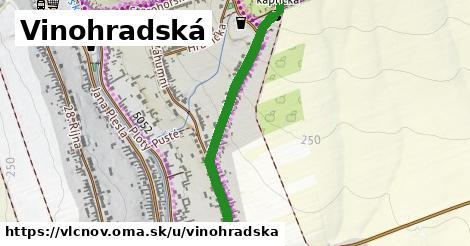 ilustrácia k Vinohradská, Vlčnov - 0,84km