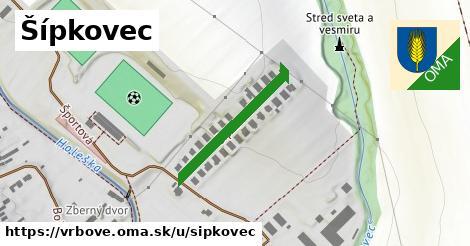 ilustračný obrázok k Šípkovec, Vrbové