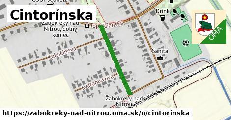 ilustrácia k Cintorínska, Žabokreky nad Nitrou - 241m