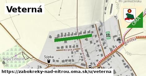ilustrácia k Veterná, Žabokreky nad Nitrou - 191m