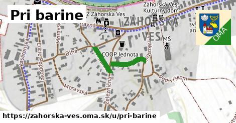 ilustračný obrázok k Pri barine, Záhorská Ves