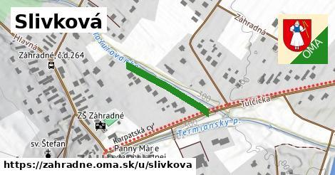 ilustrácia k Slivková, Záhradné - 209m