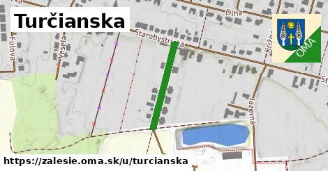ilustrácia k Turčianska, Zálesie - 198m