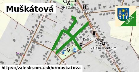 ilustrácia k Muškátová, Zálesie - 618m