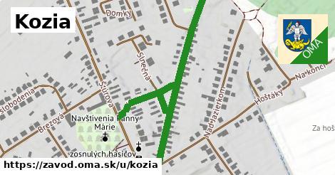 ilustrácia k Kozia, Závod - 606m