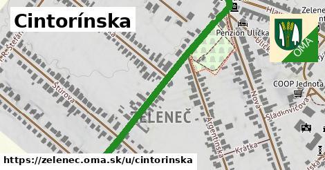ilustrácia k Cintorínska, Zeleneč - 521m