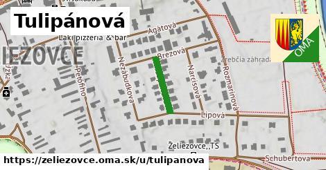 ilustrácia k Tulipánová, Želiezovce - 134m