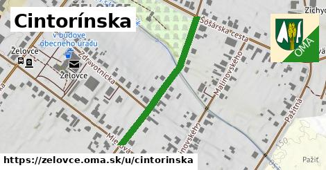 ilustrácia k Cintorínska, Želovce - 348m