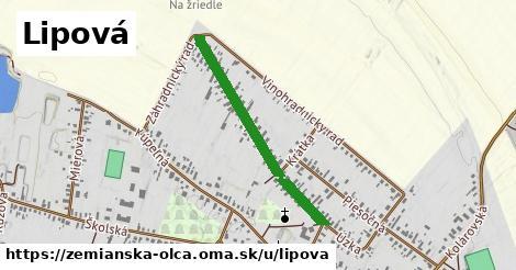 ilustrácia k Lipová, Zemianska Olča - 660m