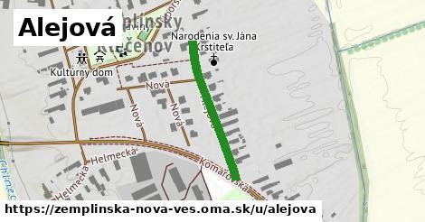 ilustrácia k Alejová, Zemplínska Nová Ves - 307m