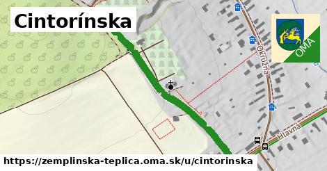 ilustračný obrázok k Cintorínska, Zemplínska Teplica
