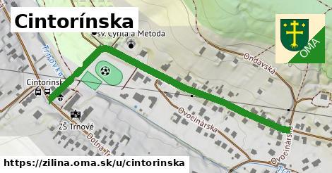 ilustračný obrázok k Cintorínska, Žilina