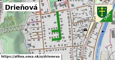 ilustrácia k Drieňová, Žilina - 283m
