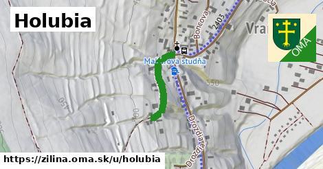 ilustrácia k Holubia, Žilina - 208m