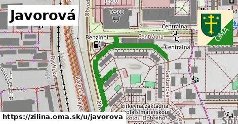 ilustrácia k Javorová, Žilina - 449m