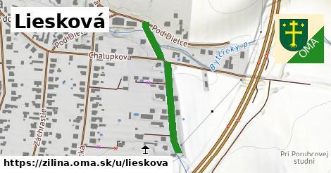 ilustrácia k Liesková, Žilina - 294m